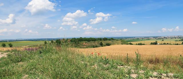 021Jun 27: Holic Summer Fields