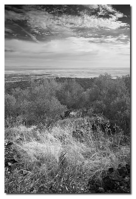 Pantano desde el Portanchito_NZ50017-ByN-