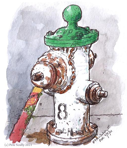 SF Hydrant Inner Sunset