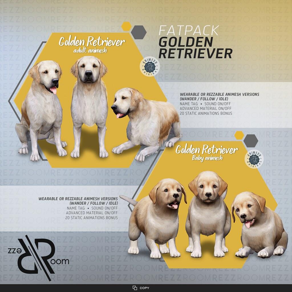 [Rezz Room] Golden Retriever Adult Animesh (Companion) and [Rezz Room] Golden Retriever Puppy Animesh (Companion)