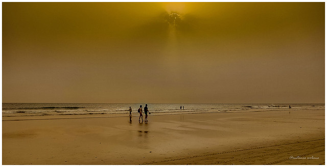 Luz  plomiza de una tarde en la playa // Leaden light from an afternoon on the beach