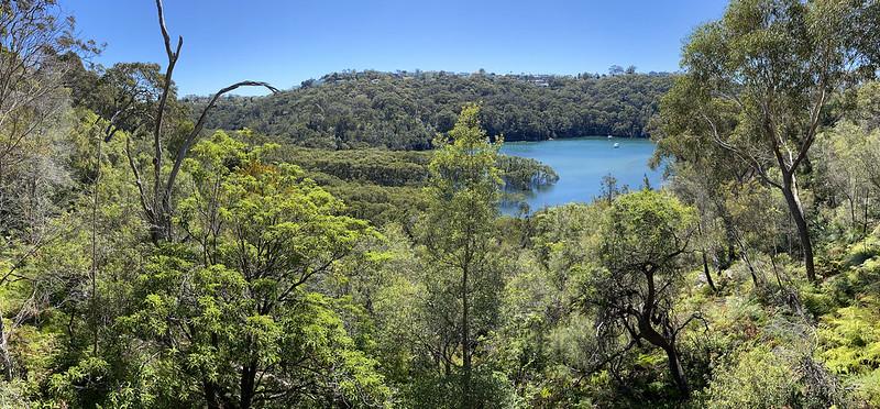 Harold Reid Reserve bushwalk