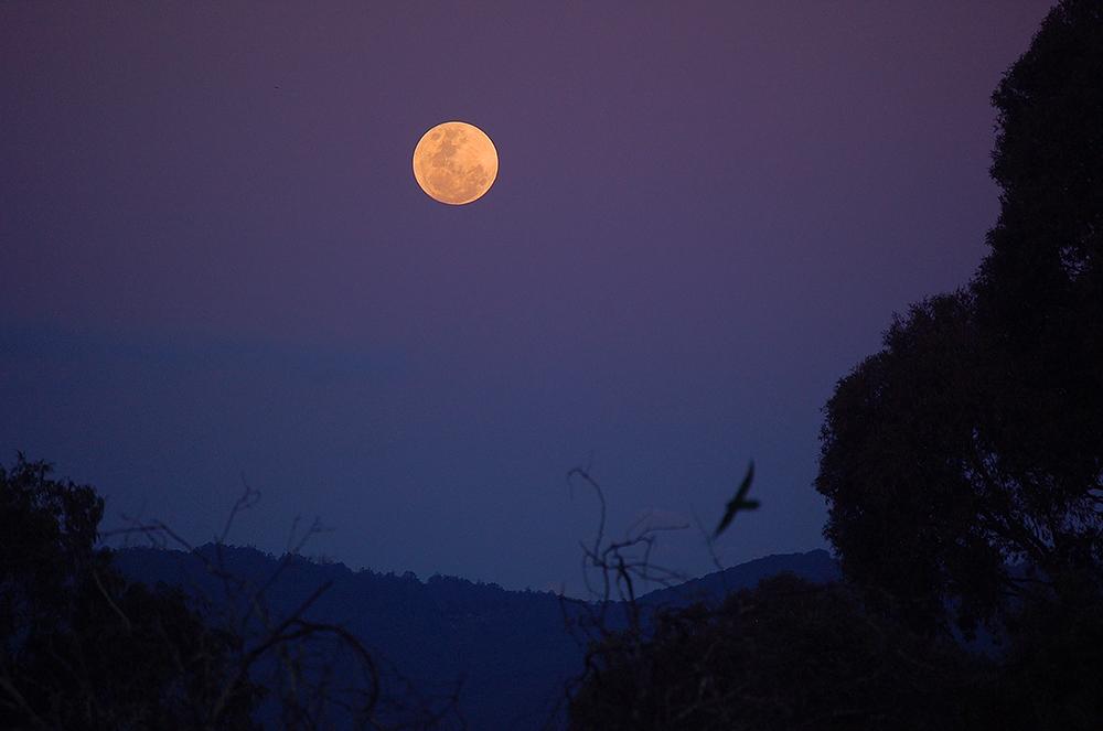 _moon_2_