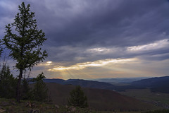 Light on Mongolian NP 2a