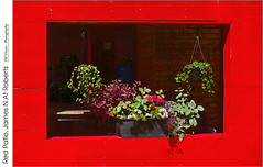 Red Patio, James N At Roberts