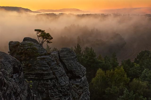Dawn at Saxon Switzerland • Dämmerung im Elbsandstein