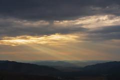 Light on Mongolian NP 1a