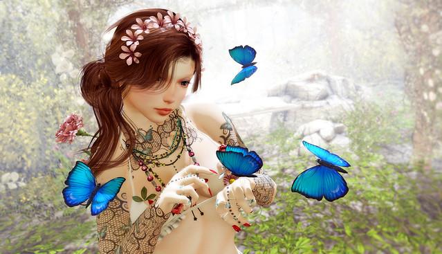 Butterflies & me