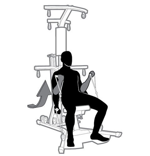 16 SE SQ Arms - Seated Biceps Curl