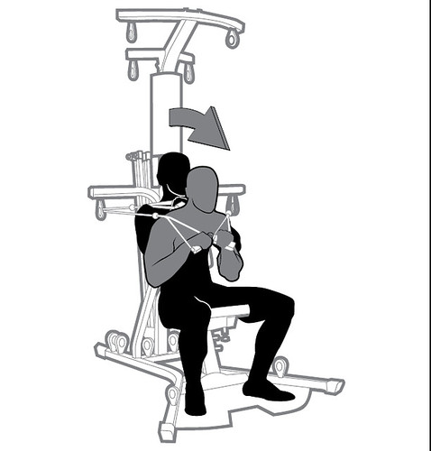 18 SE CB Abdominal - Seated Resisted Abdominal Crunch