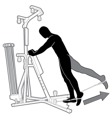 22 ST SQ Legs - Standing Hip Extension Left and Right