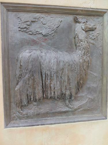 Salt's alpaca