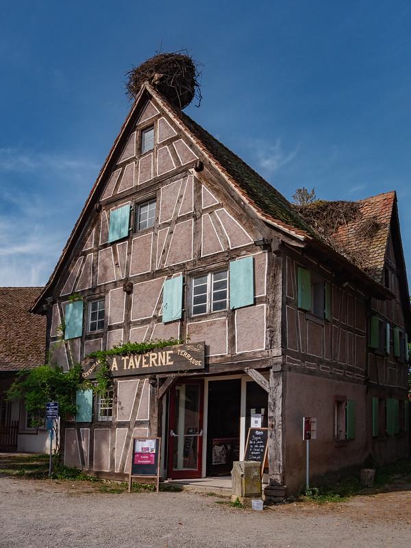 La Taverne de l'Ecomusée d'Ungersheim... 51461325601_1cc1a47e68_c