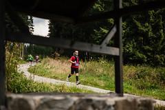 Běhej lesy Boletice