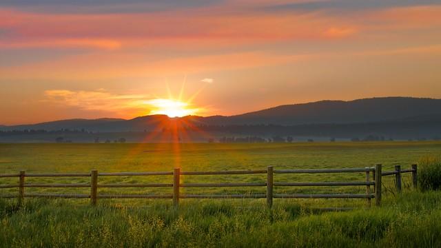 Sunrise Fence 0271 A (Explored)