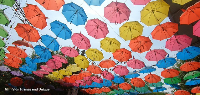 Umbrellas Paradise | Thousands of colorful umbrellas Float Above the streets in Vietnam