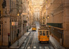 The Lisbon Trams