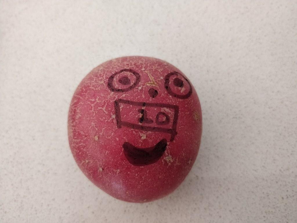 Rooty, Isaac's entrant into The Potato Olympics