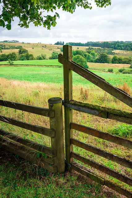 Gate to a field, Newton of Belltrees, Lochwinnoch, Renfrewshire, Scotland, UK