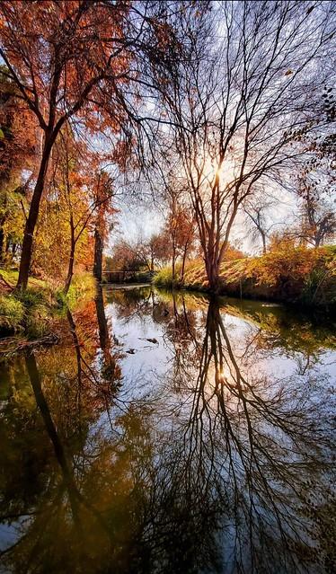 Nature garden
