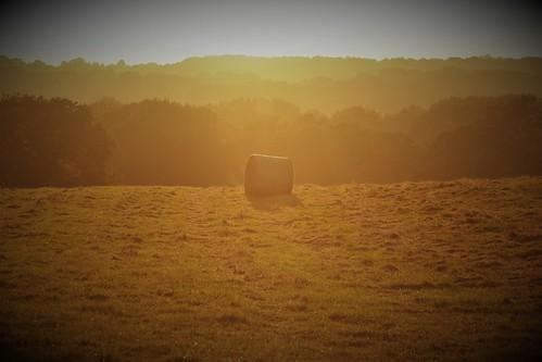 haybalesunset sunsetonhaybale singlehaybale solohaybale fieldinlight sunsetfield goldenfield englishfarm