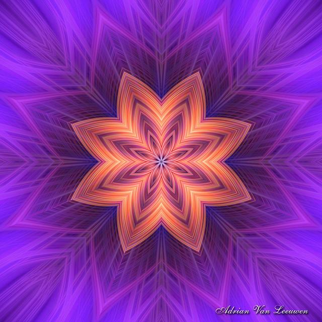 Dazzling Floral Fractal Art Design