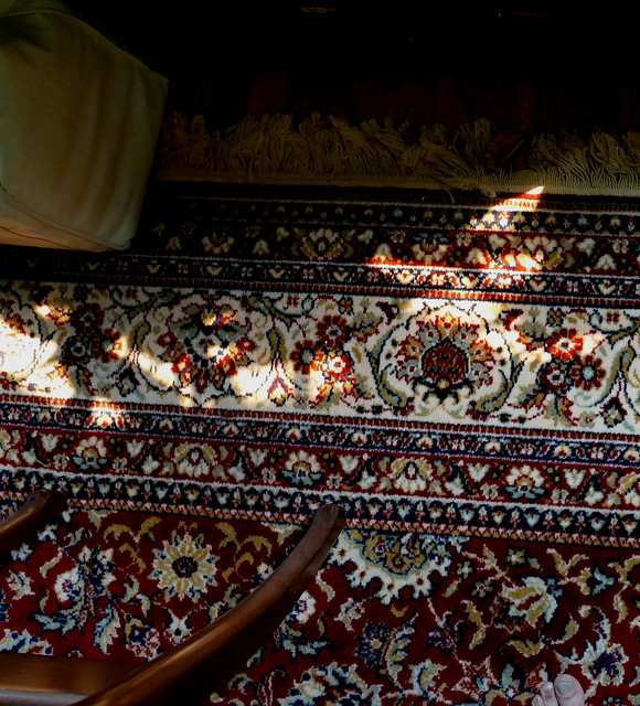 rug & sunlight 8-21