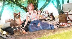 Magic Garden ♥