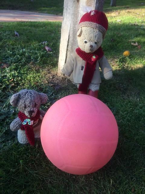 Paddington and Scout Play Kick-a-Ball 3.