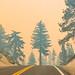 2021 Caldor Fire South Lake Tahoe
