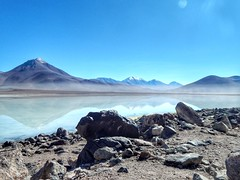 Laguna Blanca. Sud Lipez.  Potosí. Bolivia.