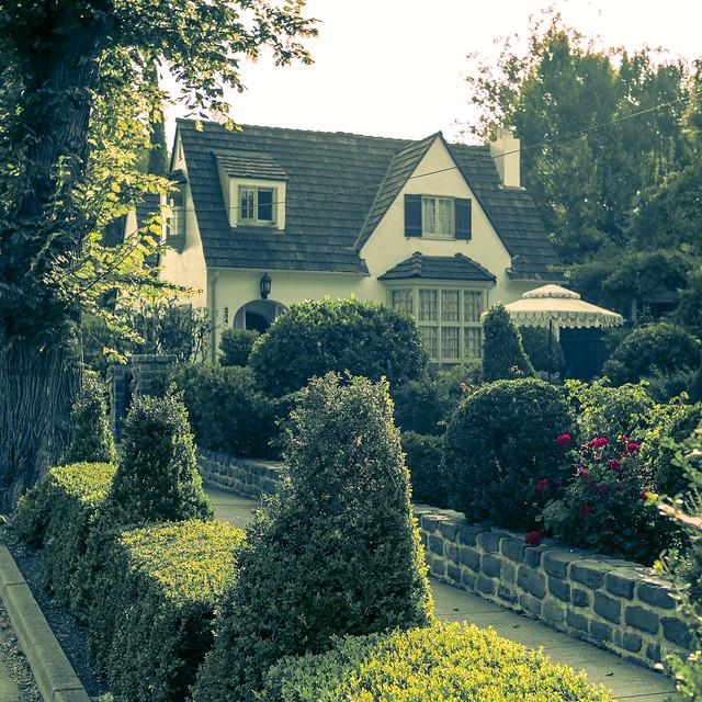 Cottagecore Topiarypunk