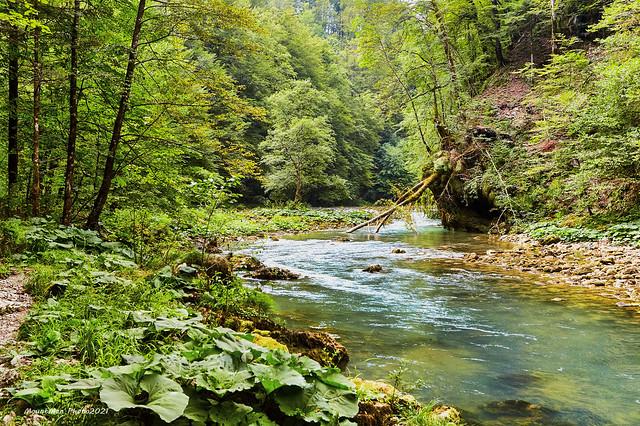 Kupa poviše prvoga mosta od izvora