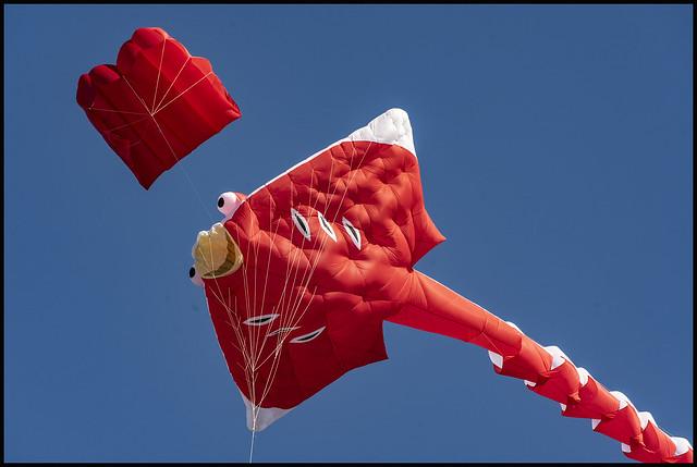 Clontarf Kite Fest 2021-26=