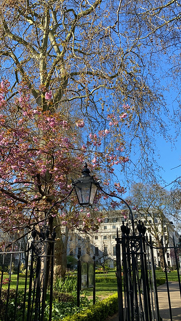 A beautiful Spring day out in Central London and even went into a just re-opened shop