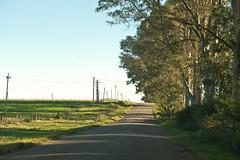 Colonia Valdense, Uruguay, 2012