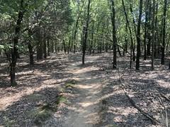 Dorba Trail