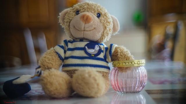 10146 - Teddy Bear Stripes