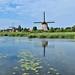 Molens Hoornse vaart Alkmaar