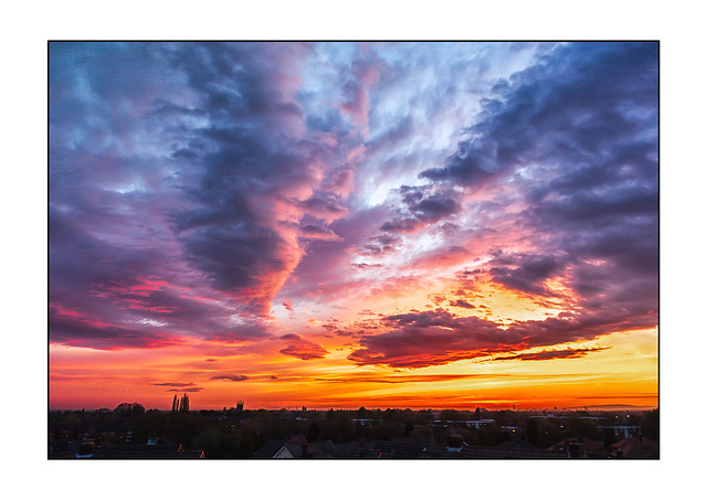 Woodley Sunset 4889