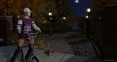 Virtual Trends: Autumn Bliss