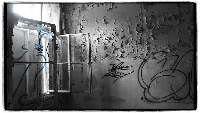 Blue Ghost in the Window - HWW!