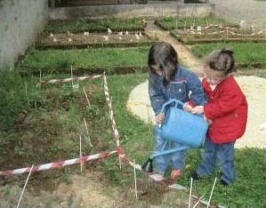 bambine impegnate nella cura delle piantine di patate