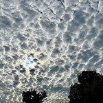 14. September 2021 - 20:10 - Stratocumulus clouds