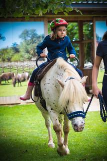 Ponyreiten mit Romeo
