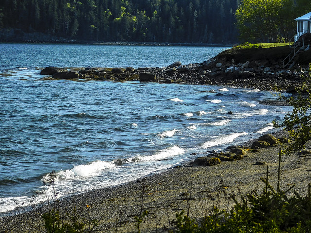 Cove at Doan's Point