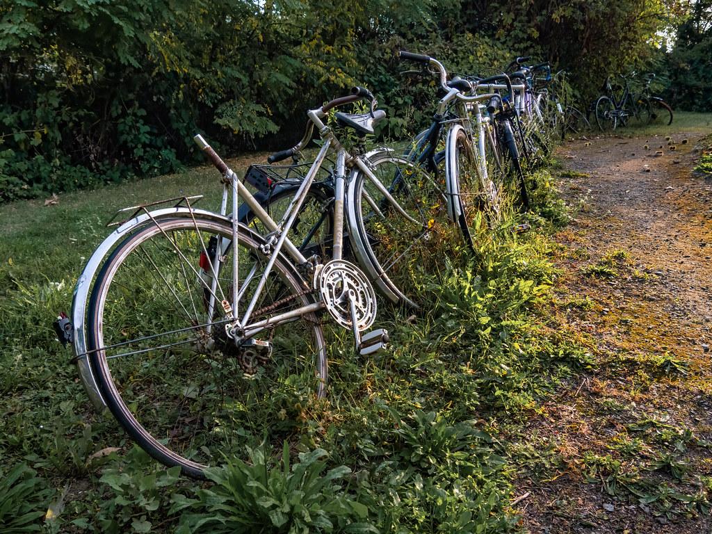 Achtung bicyclette ! Vélo sans selle... 51477681513_00edfec276_b