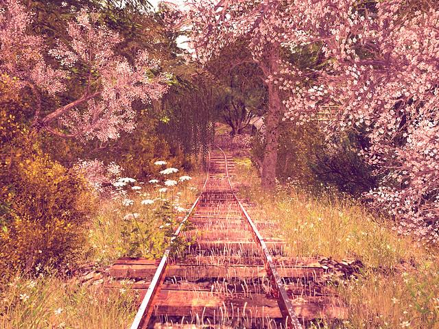 Elvion Fall 2021 - Roll On Down the Tracks