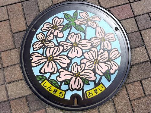 Shinmachi Gunma, manhole cover (群馬県新町のマンホール)