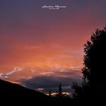 15. September 2021 - 10:08 - The Sunset Series III